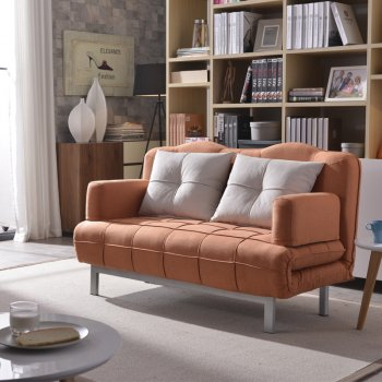 Loveseat sleeper sofa come bed